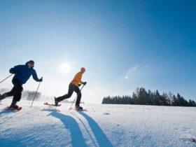 Schneeschuhwandern Bild: OÖ Tourismus/Erber