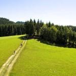Bild: OÖ tourismus/Erber