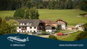 Urlaub im Grünen Oberösterreich - Forellenwirt in Mitterbach
