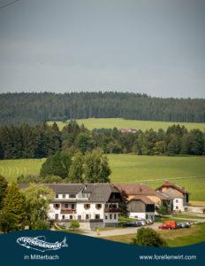Wanderurlaub Oberösterreich - Erholung in der Natur beim Forellenwirt