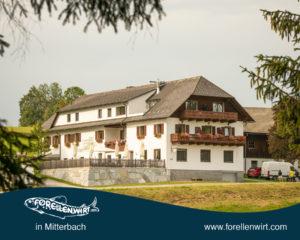 Sommurlaub in Oberösterreich - Forellenwirt in Mitterbach
