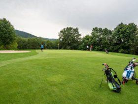 Golfclubs Oberösterreich - Green |Forellenwirt in Mitterbach
